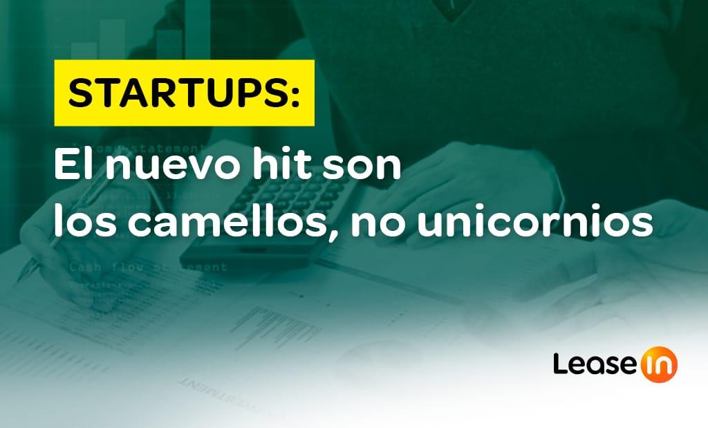 startups blog leasein